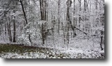 Tennessee Land 1 Acres 1.2 Ac In Cumberland Cove, Tn For $9900