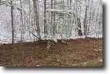 Tennessee Land 1 Acres 1.03Ac In Cumberland Cove, Tn For $9900