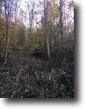 Kentucky Hunting Land 83 Acres Hunting Property 83+/-ac Elliott $69,900