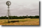 180 acre Texas Horse/Cattle Property