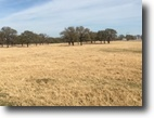 Texas Ranch Land 114 Acres Parker County TX Horse Property