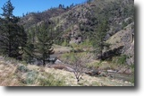 Calif. 40 acre Gold Mining Claim w/River