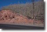 Colorado Land 2 Acres Easy to Access with Beautiful views