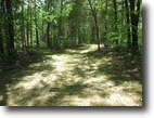 74 Acres In Hart County, KY