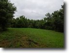 Tennessee Farm Land 56 Acres 55.83 Ac w/Marketable Timber, Sp Fed Pond