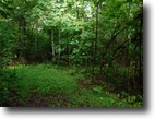 Tennessee Farm Land 20 Acres 19+ac Ideal for Develpoment In Cookeville