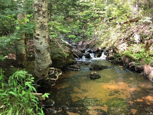 co rd lake property negaunee michigan