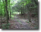 70 acres Hunting Southport NY Bird Creek