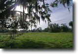Florida Land 525 Acres Lazy W Ranch in Felda, Florida