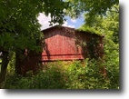 Barn And 15 Acres In Metcalfe County, KY