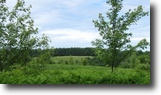 5 acres in Coventry NY 432 Bowbell Road
