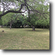 Texas Land 1 Acres 123 Early Trail - Land for Sale in 78228