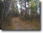 Wisconsin Land 87 Acres Mulligan Lake, Wascott, Wi