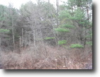 22 acres near Ithaca NY Hunting