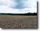 76 acres Farmland in Bath NY Windfall Road