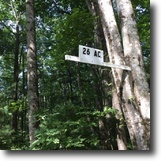 Virginia Land 26 Acres Wooded Tract