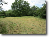 10 Acres In Metcalfe County, KY