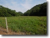 Tennessee Farm Land 51 Acres 50.74 Ac w/ Creek, Views, Hunters Cabin
