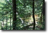 Michigan Land 78 Acres TBD Firesteel Rd (78Ac) MLS#1110133