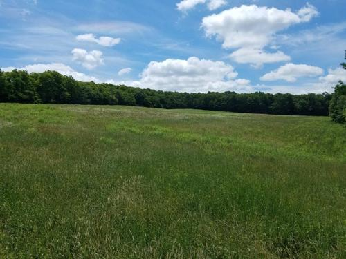 house & land farm rexville ny co rte property