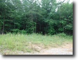 Tennessee Farm Land 41 Acres 40.85ac W/Oil Wells–Income Production