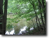 38 acres Woods and Pond near Ithaca NY