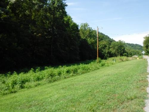 house & land mtn views country setting property celina tennessee