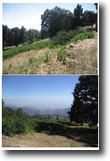 California Land 32 Square Feet Running Spring land ready to build