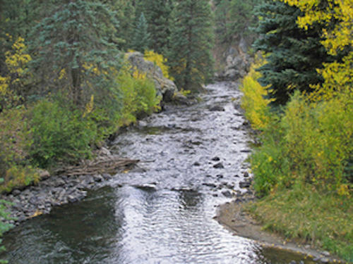 kenosha creek, claim creek colorado