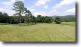 Virginia Farm Land 7 Acres Sealed Bid Land Auction