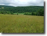 61 acres Farmland in Troupsburg NY CR 126