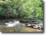 Tennessee Land 50 Acres Secluded Mountain Property