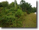 Tennessee Farm Land 16 Acres 16.27 Ac, Creek, Gentle Terrain, Mtn Views