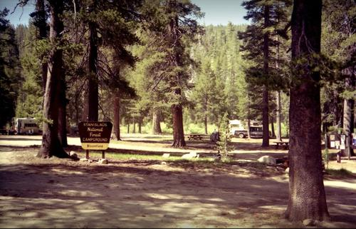 bloomfield campground california