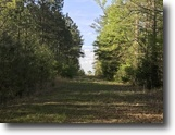52 Acres For Sale in Oktibbeha County, MS