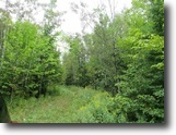 Michigan Land 19 Acres 5569 State Highway M38 MLS 1111045