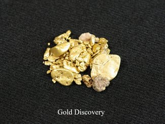 Gold Discovery from Alpine Gold Claims