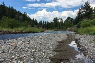 Claim's East Fork Carson River / 20 Acres