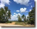 45.25 Acres in Calhoun County, MS - tract2