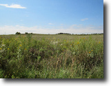 275 +/- Acres Greensburg, KS Auction