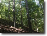 Mississippi Hunting Land 200 Acres 200ac - Firetower Rd, West Point, MS 39773