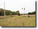 Auction 80 Acres Hunting & Cropland