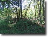 Tennessee Hunting Land 1 Acres 1.30 Ac Private & Secluded, No Restrict