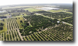 Florida Land 11 Acres Frostproof Scenic Hwy Commercial
