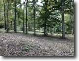 57 Wooded Acres In Hart County, KY