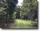 Florida Land 370 Acres Lake County Recreational and Ag Land
