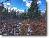 Michigan Hunting Land 80 Acres Tbd AAA Rd # 1111599