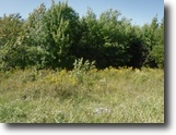 Tennessee Land 1 Acres 0.53 Wooded Level Ac No Restrictions