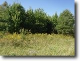 Tennessee Land 1 Acres 1.06 Wooded Level Ac No Restrictions