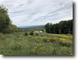 96 acres Cattle Farm Barns in Guilford NY